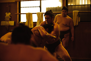 Sakaigawa Beya Sumo Stable Tokyo