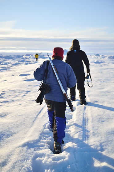Walking Safari Arctic Kingdom Nunavut