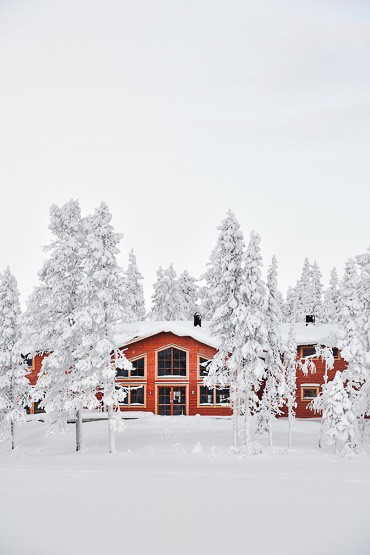 Pinetree Lodge Lapland